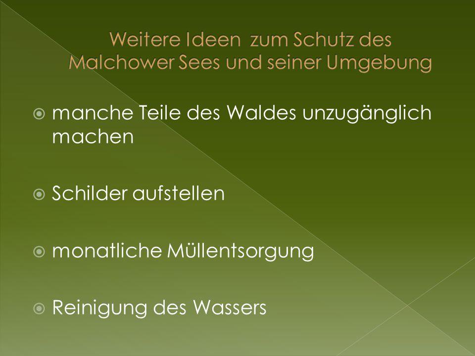 Weitere Ideen zum Schutz des Malchower Sees und seiner Umgebung