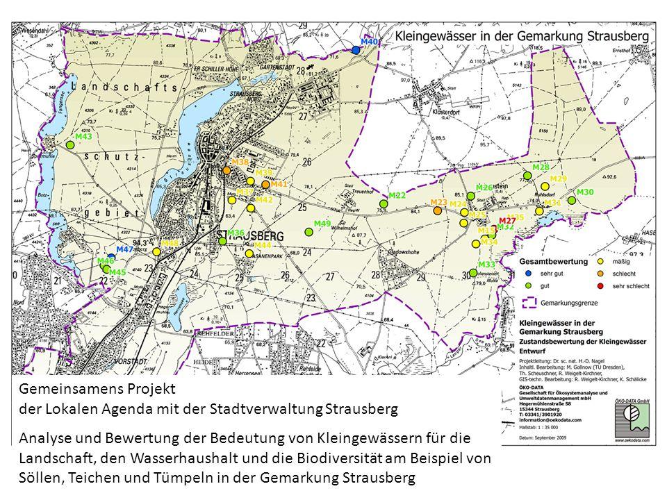Gemeinsamens Projekt der Lokalen Agenda mit der Stadtverwaltung Strausberg.