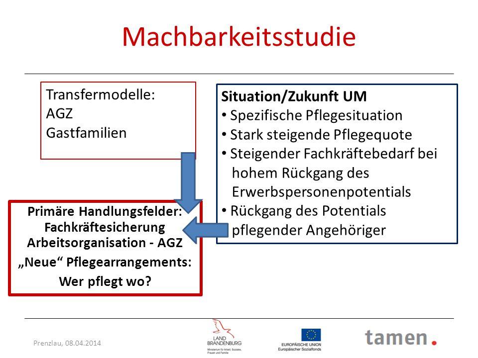 Machbarkeitsstudie Transfermodelle: Situation/Zukunft UM AGZ