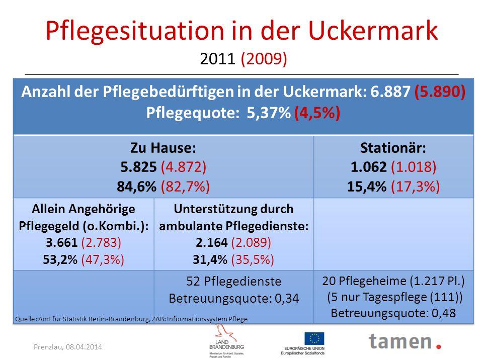 Pflegesituation in der Uckermark 2011 (2009)