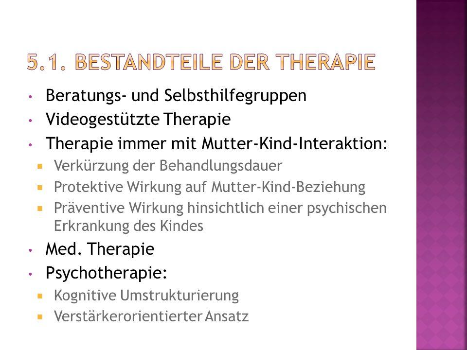 5.1. Bestandteile der Therapie