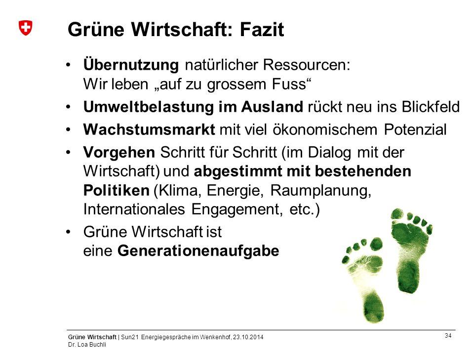 Grüne Wirtschaft: Fazit