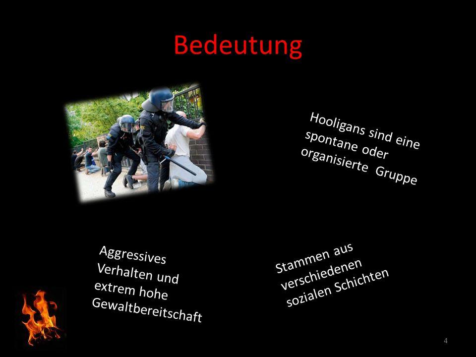 Bedeutung Hooligans sind eine spontane oder organisierte Gruppe