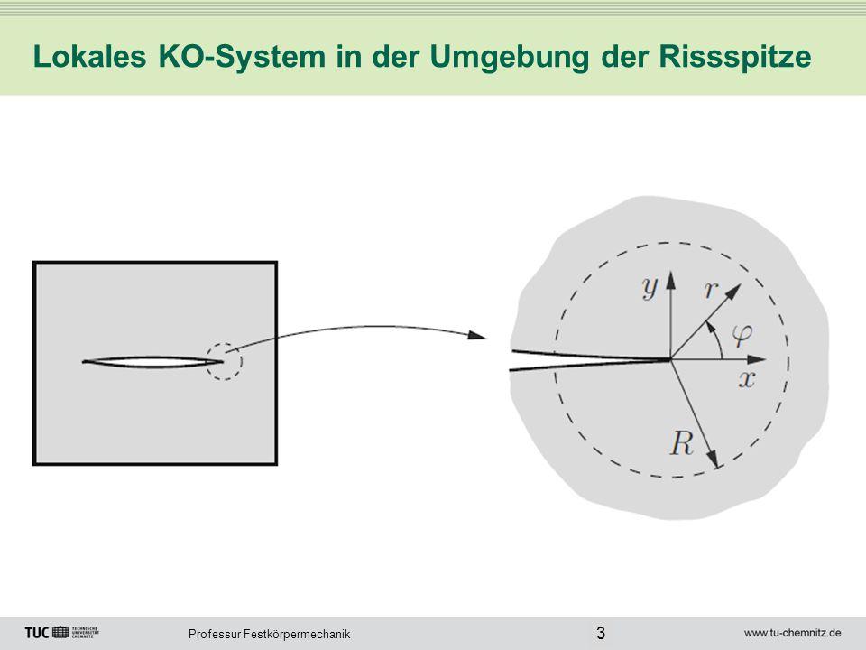Lokales KO-System in der Umgebung der Rissspitze