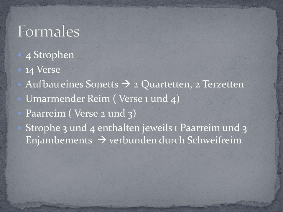 Formales 4 Strophen 14 Verse