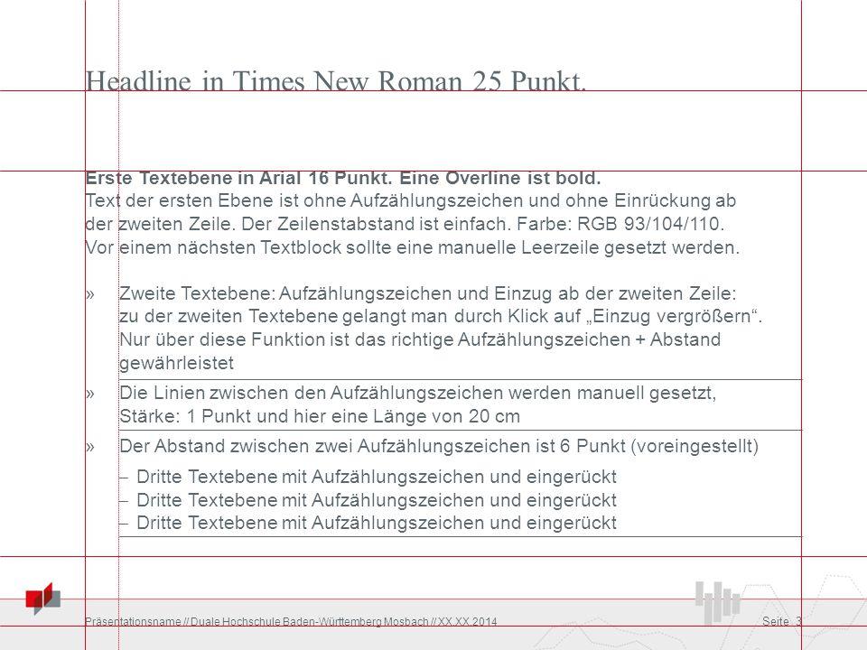 Headline in Times New Roman 25 Punkt.