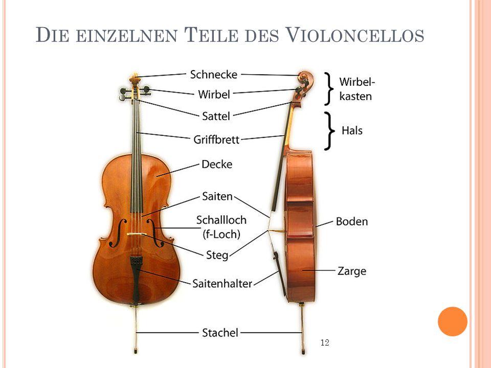 Die einzelnen Teile des Violoncellos