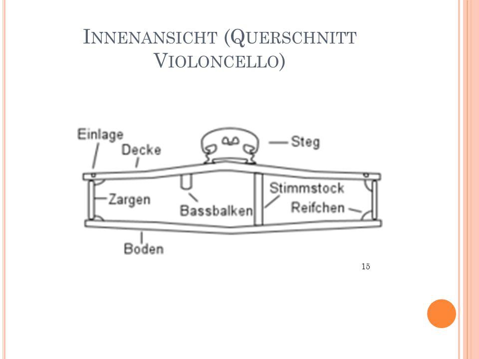 Innenansicht (Querschnitt Violoncello)