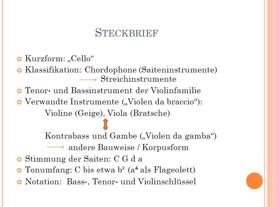 Violine steckbrief