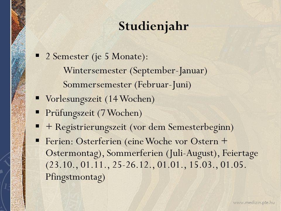 Studienjahr 2 Semester (je 5 Monate):