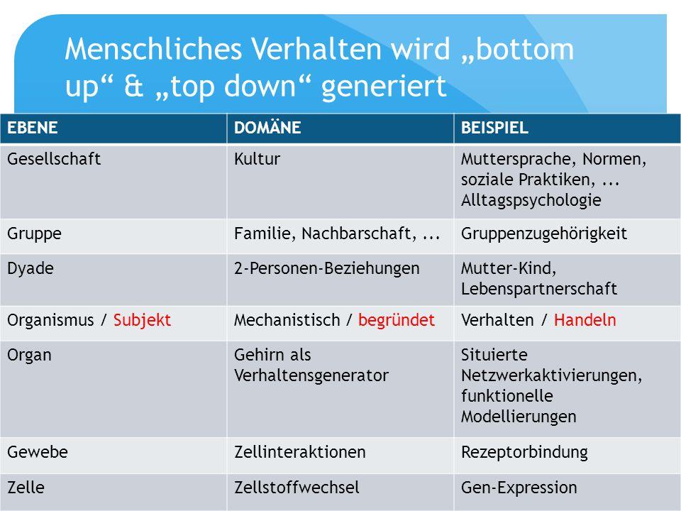 """Menschliches Verhalten wird """"bottom up & """"top down generiert"""