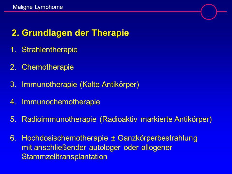 2. Grundlagen der Therapie