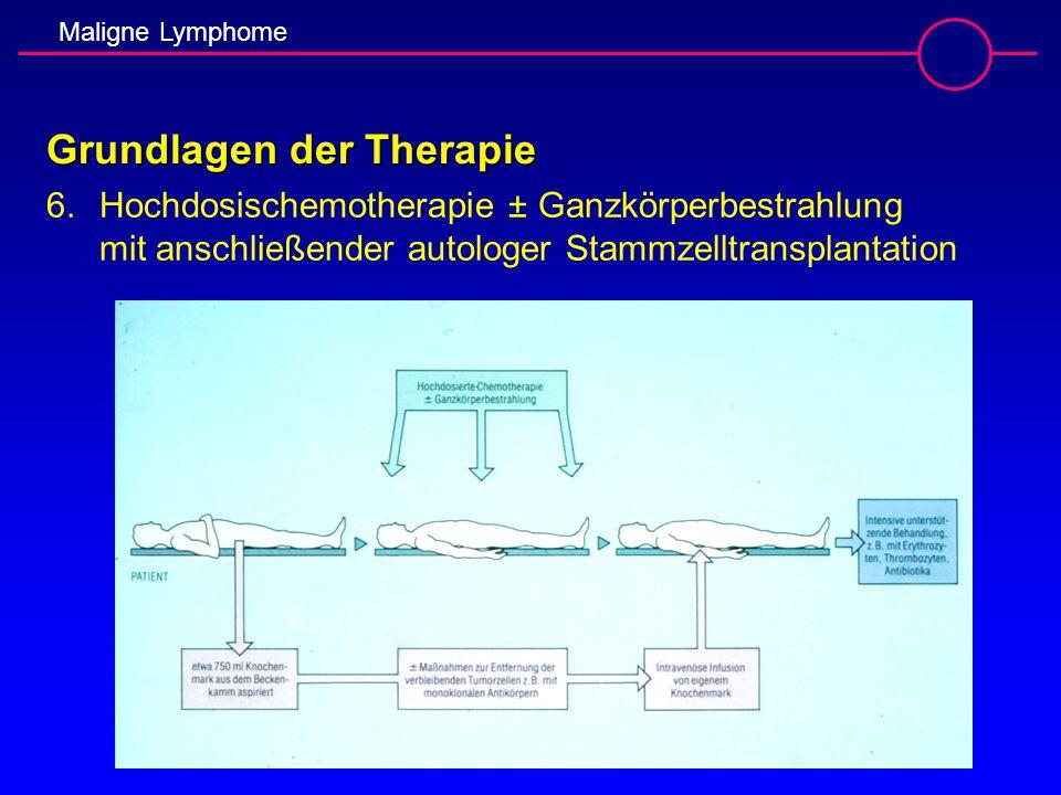 Grundlagen der Therapie