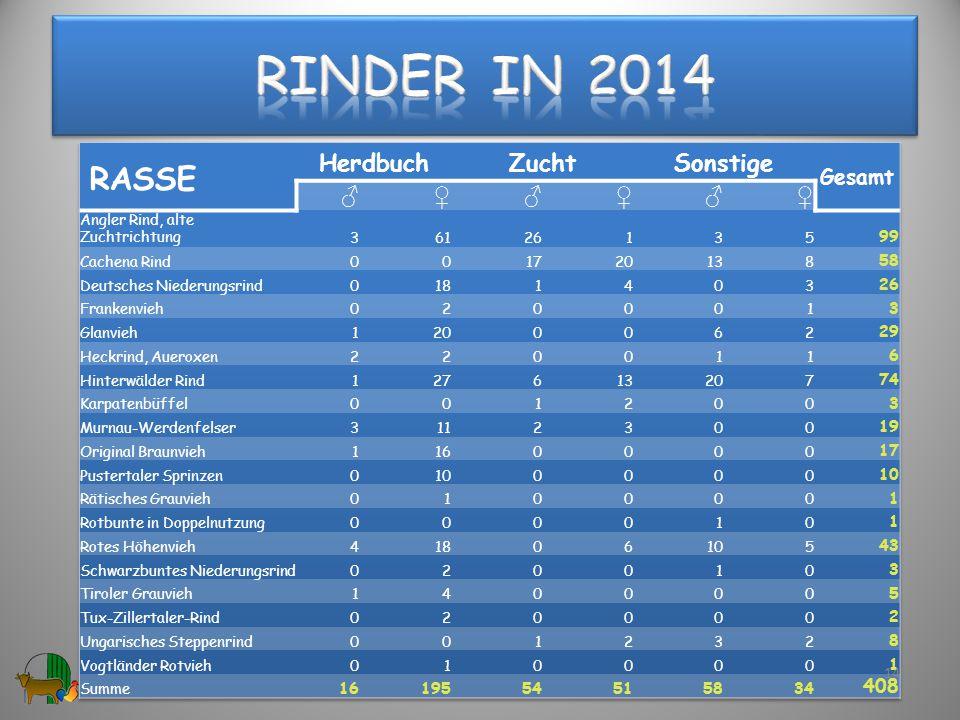 Rinder in 2014 RASSE Herdbuch Zucht Sonstige ♂ ♀ Gesamt 408 99 58 29