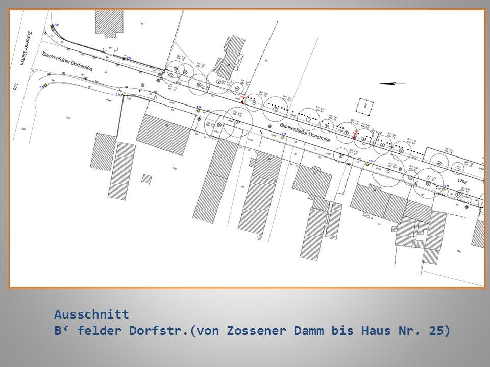 Ausschnitt B' felder Dorfstr.(von Zossener Damm bis Haus Nr. 25)
