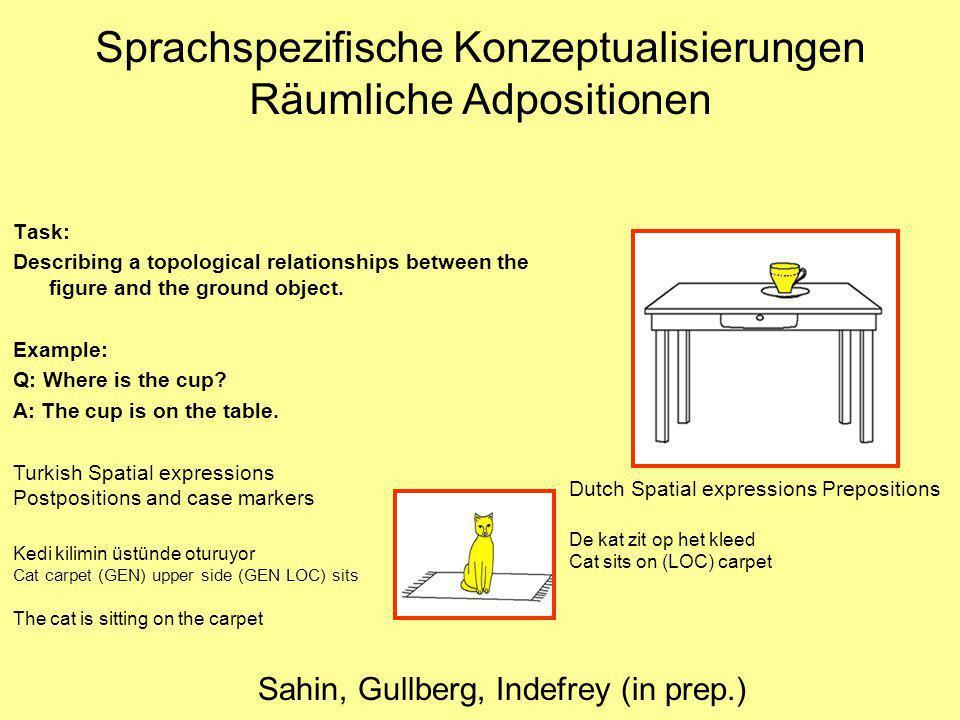 Sprachspezifische Konzeptualisierungen Räumliche Adpositionen