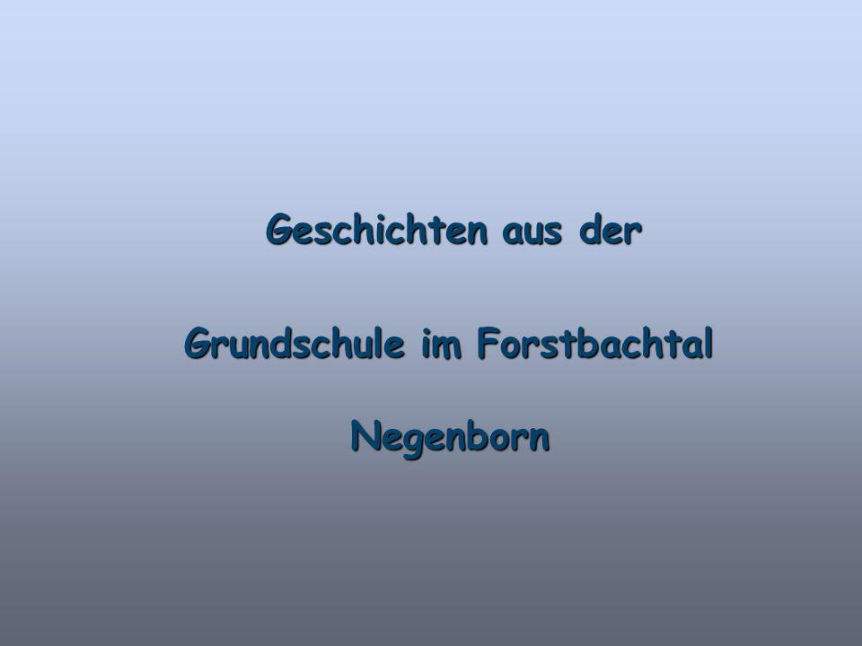 Grundschule im Forstbachtal Negenborn