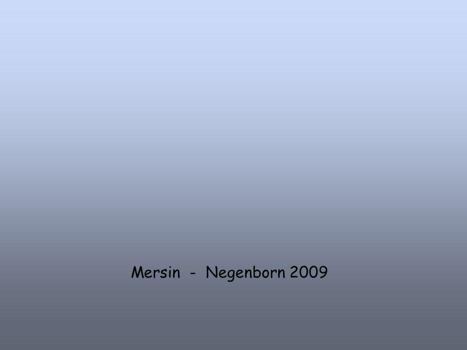Mersin - Negenborn 2009