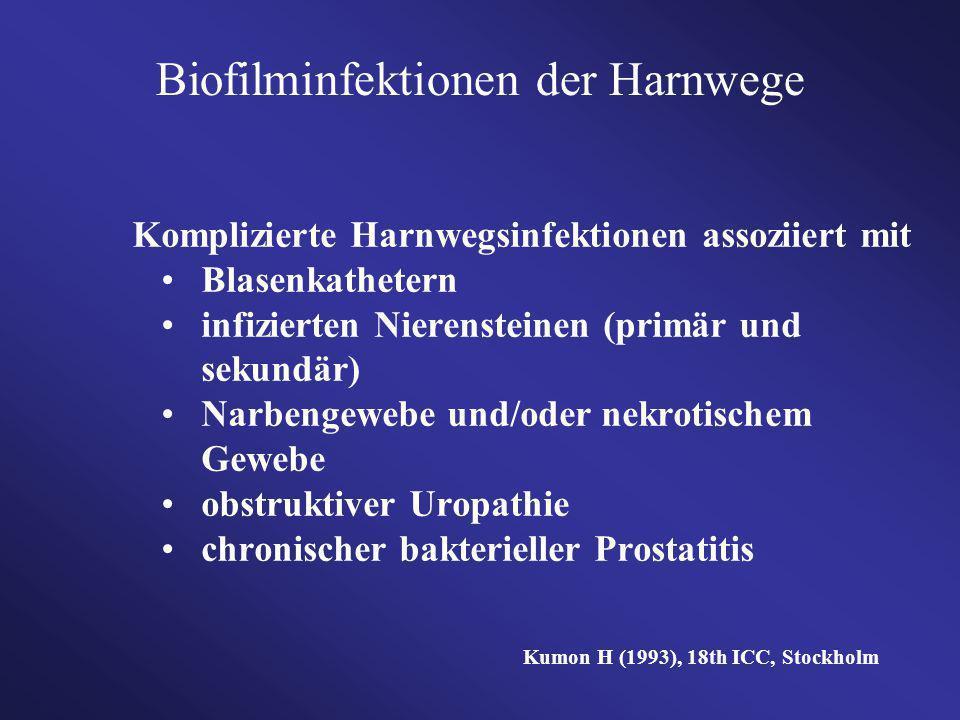 Biofilminfektionen der Harnwege