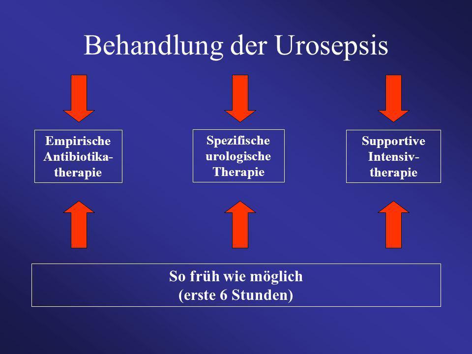 Behandlung der Urosepsis