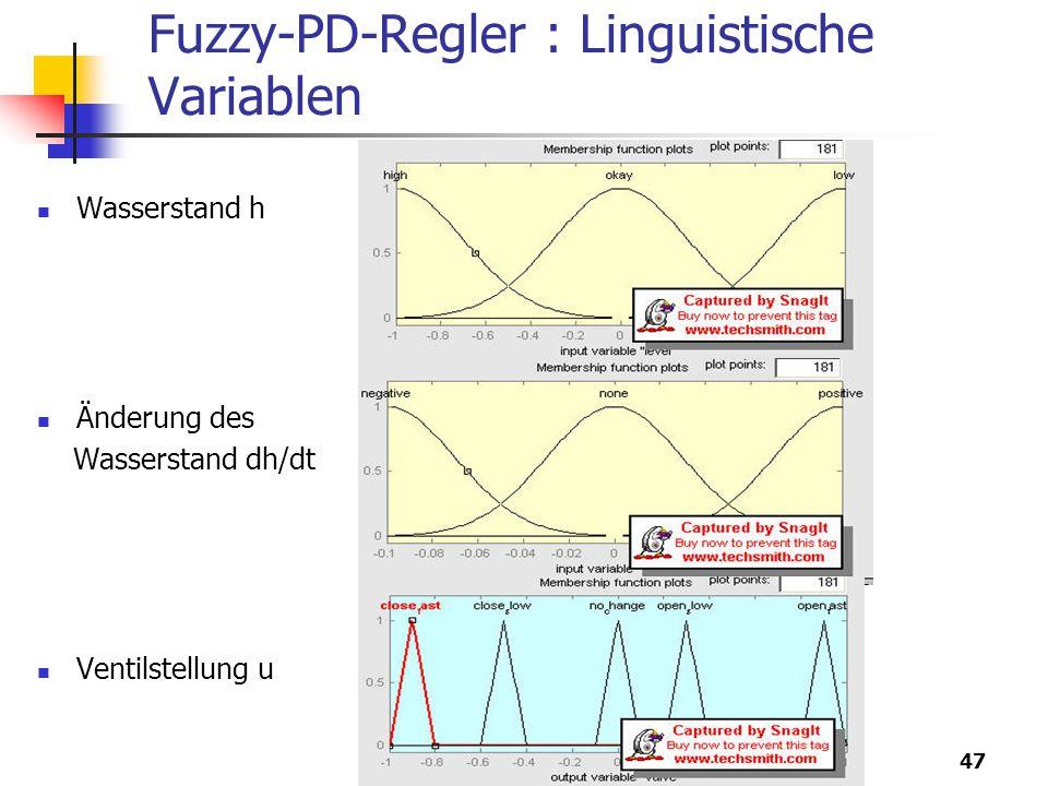 Fuzzy-PD-Regler : Linguistische Variablen