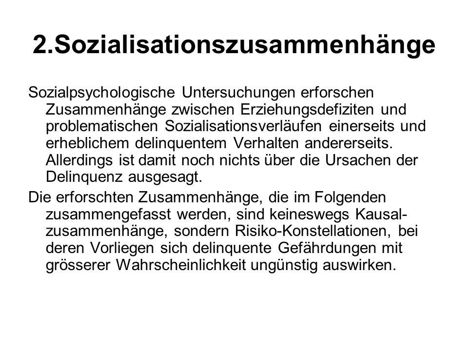 2.Sozialisationszusammenhänge