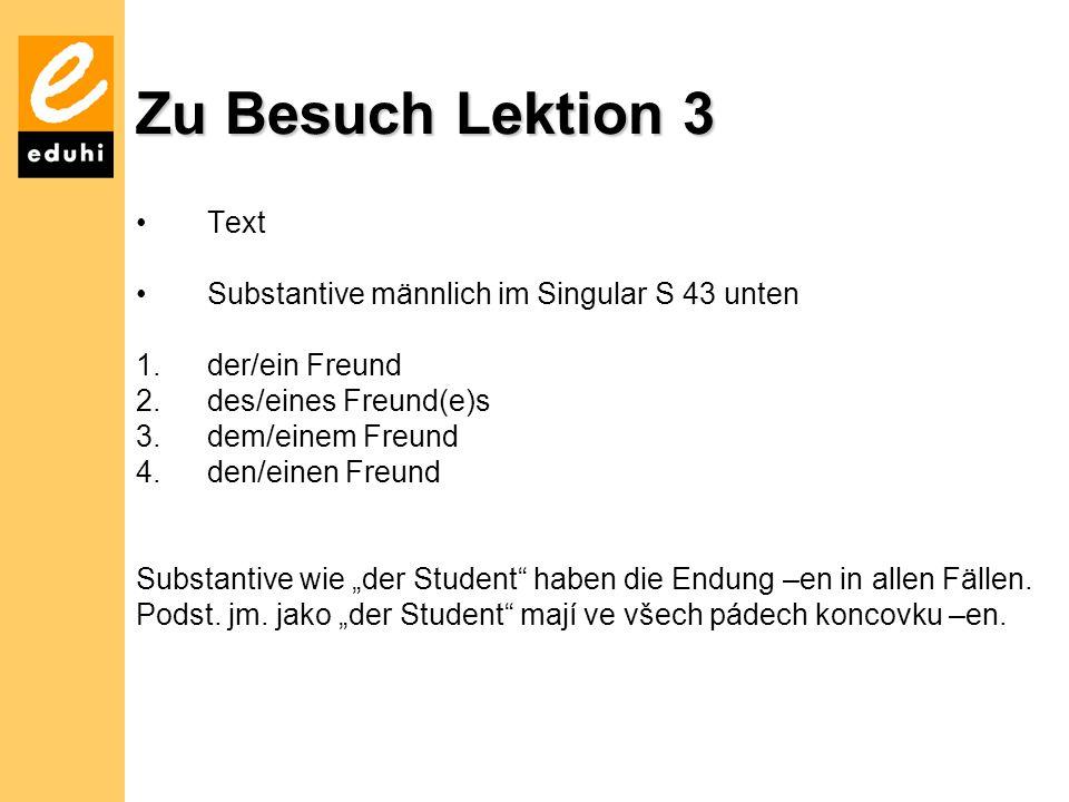 Zu Besuch Lektion 3 Text Substantive männlich im Singular S 43 unten