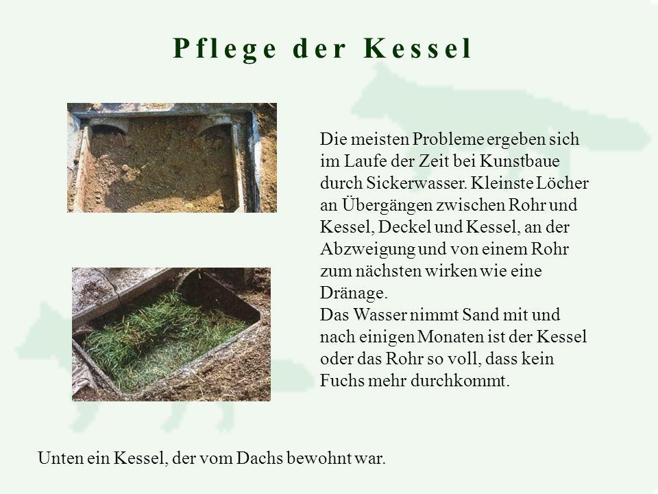 Nett Was Ist Kessel Galerie - Die Besten Elektrischen Schaltplan ...