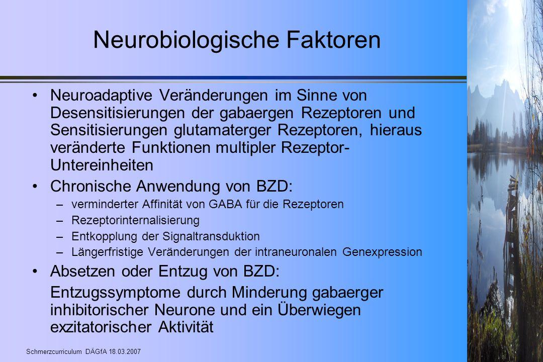 Neurobiologische Faktoren