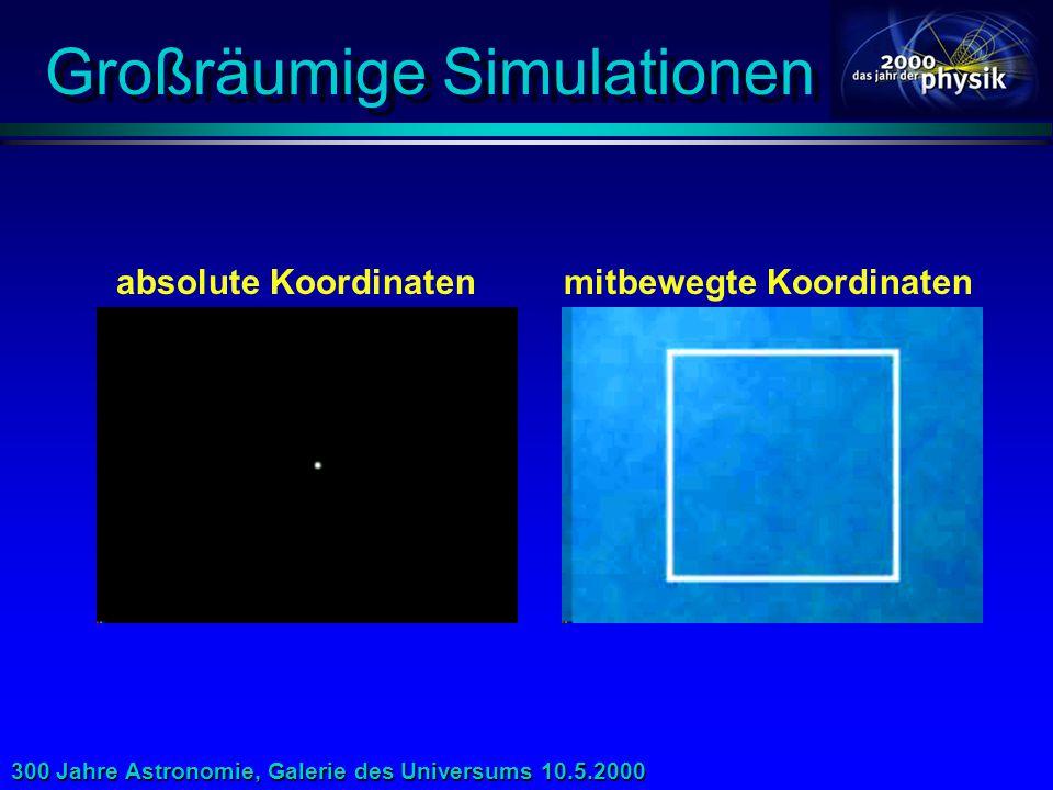 Großräumige Simulationen