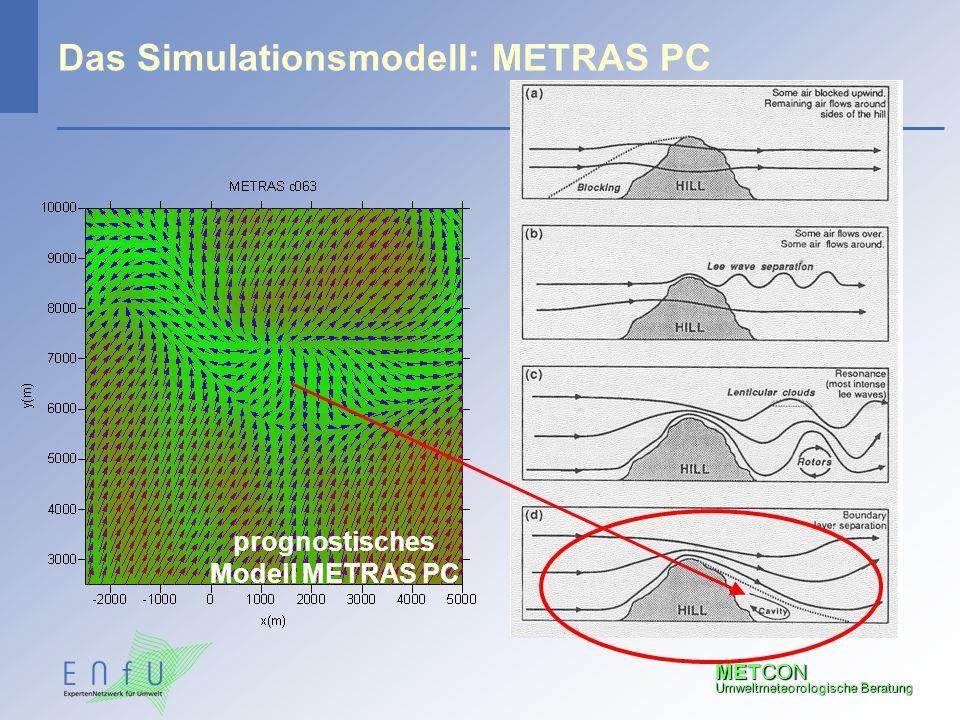 Das Simulationsmodell: METRAS PC