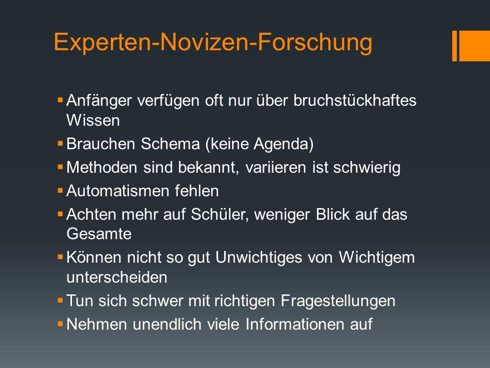 Experten-Novizen-Forschung