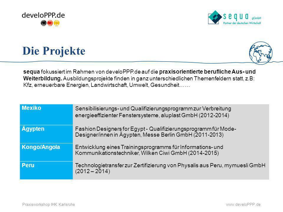 Die Projekte