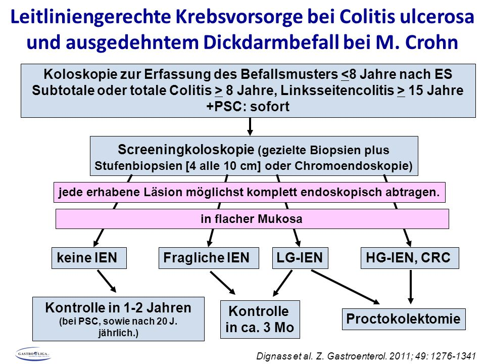 Leitliniengerechte Krebsvorsorge bei Colitis ulcerosa und ausgedehntem Dickdarmbefall bei M. Crohn