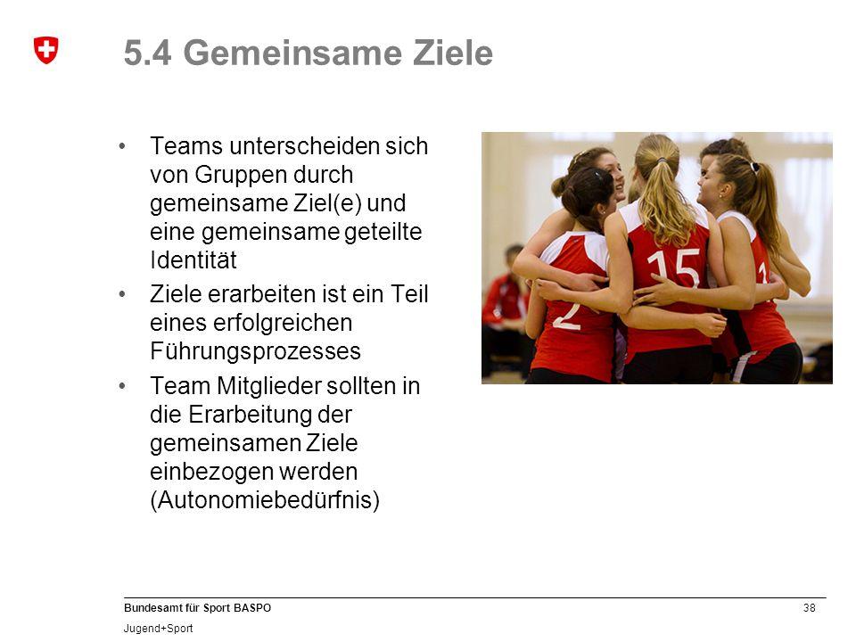 5.4 Gemeinsame Ziele Teams unterscheiden sich von Gruppen durch gemeinsame Ziel(e) und eine gemeinsame geteilte Identität.