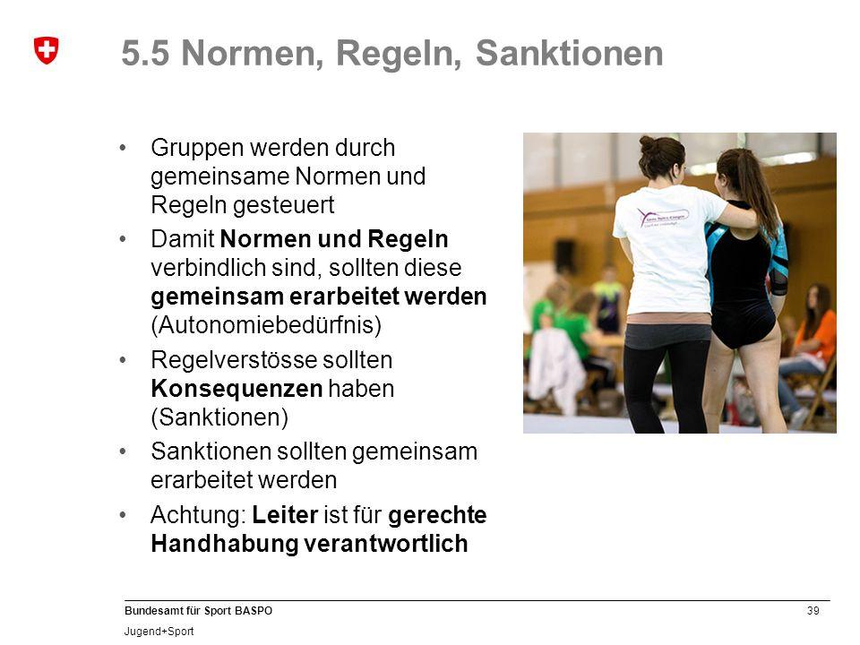 5.5 Normen, Regeln, Sanktionen