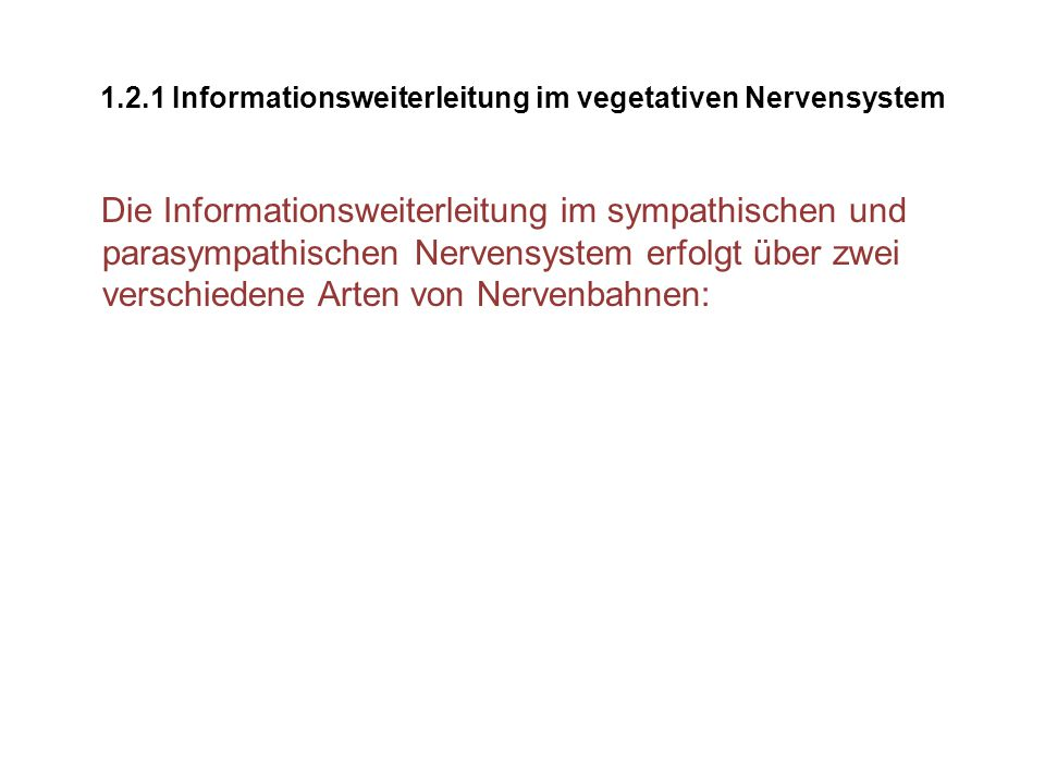 1.2.1 Informationsweiterleitung im vegetativen Nervensystem
