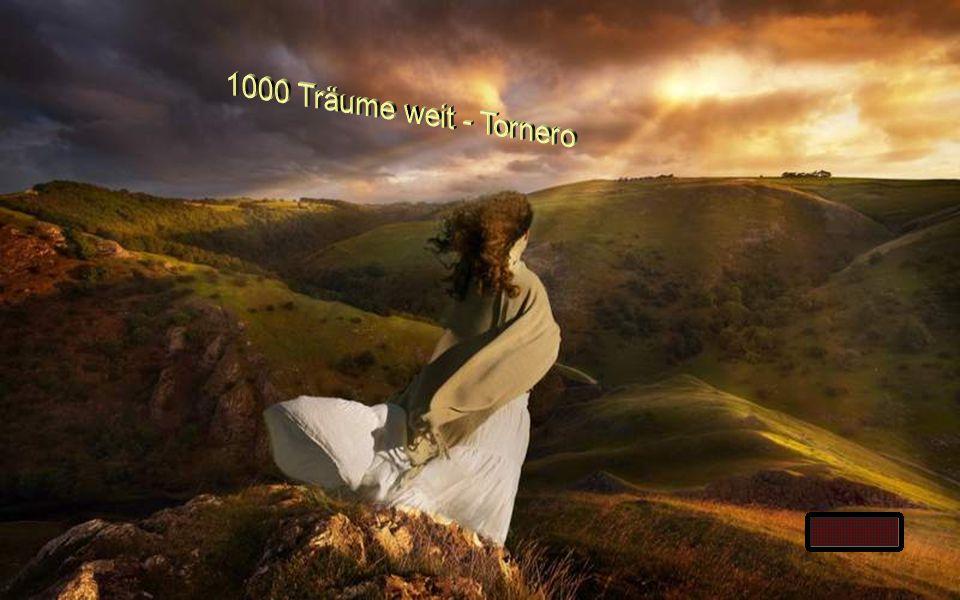 1000 Träume weit - Tornero