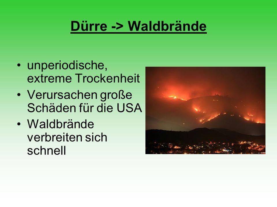 Dürre -> Waldbrände