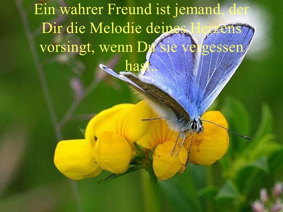 Ein wahrer Freund ist jemand, der Dir die Melodie deines Herzens vorsingt, wenn Du sie vergessen hast..