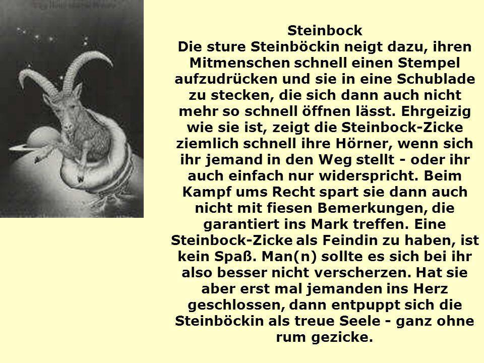 Steinbock Die sture Steinböckin neigt dazu, ihren Mitmenschen schnell einen Stempel aufzudrücken und sie in eine Schublade zu stecken, die sich dann auch nicht mehr so schnell öffnen lässt.