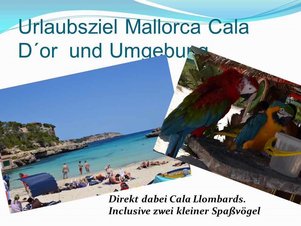 Urlaubsziel Mallorca Cala D´or und Umgebung