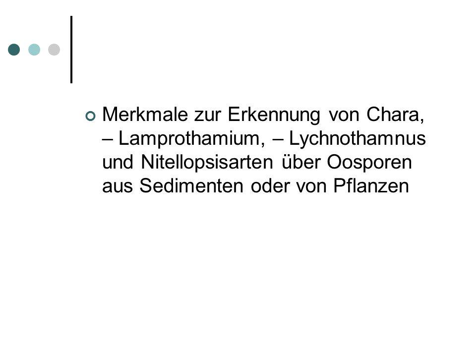 Merkmale zur Erkennung von Chara, – Lamprothamium, – Lychnothamnus und Nitellopsisarten über Oosporen aus Sedimenten oder von Pflanzen