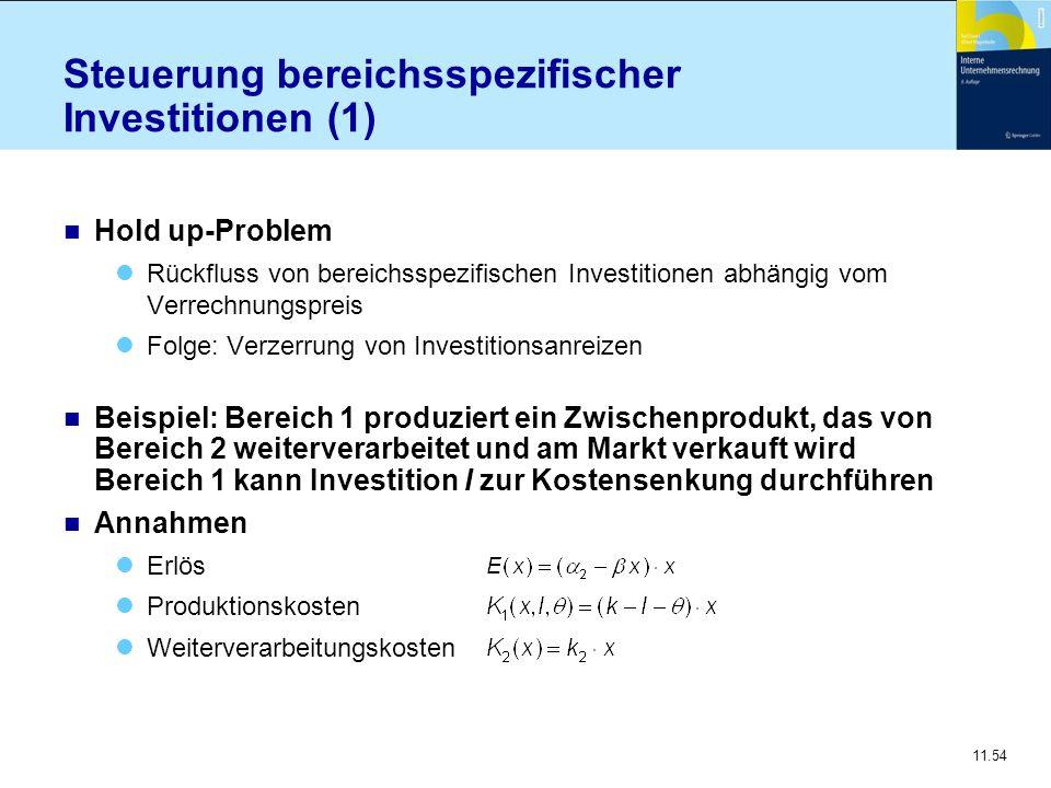 Steuerung bereichsspezifischer Investitionen (1)