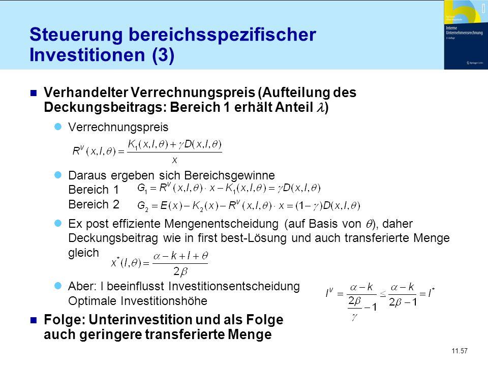Steuerung bereichsspezifischer Investitionen (3)