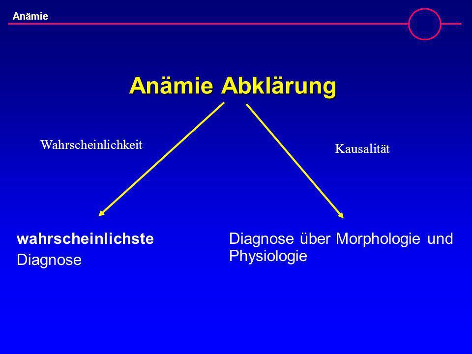 Anämie Abklärung wahrscheinlichste Diagnose