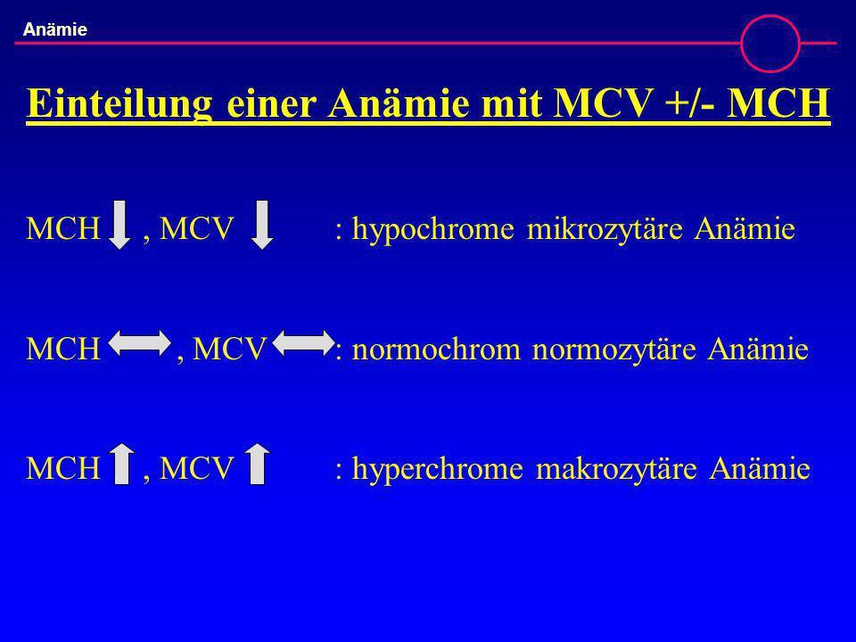 Einteilung einer Anämie mit MCV +/- MCH