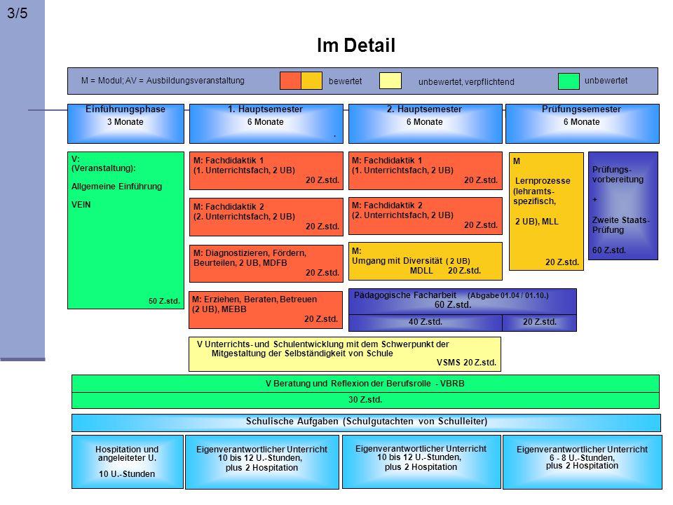 3/5 Im Detail. M = Modul; AV = Ausbildungsveranstaltung. bewertet. unbewertet. unbewertet, verpflichtend.