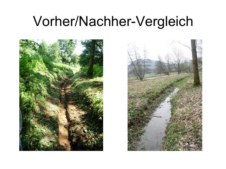 Vorher/Nachher-Vergleich