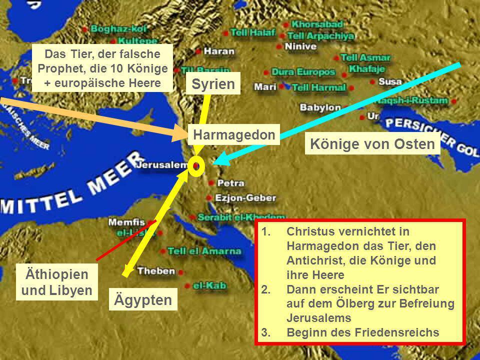 Das Tier, der falsche Prophet, die 10 Könige + europäische Heere